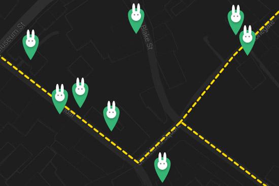 bunny-thumb-map